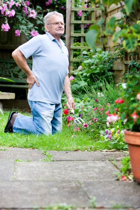 Gardening, back pain essex, Philip Jones, Joanne Oaten, Mark Gurden, Marcel Morelli, Will Kay, Chiropractors